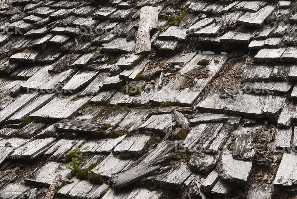 Time for a New Roof! stock photo