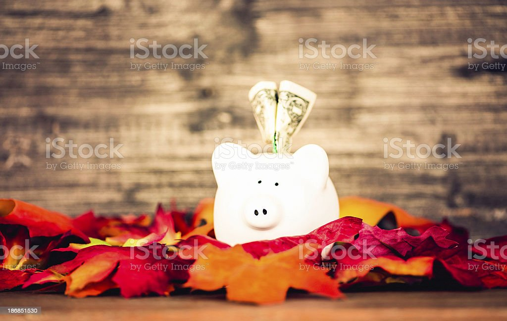 Time For Fall Savings stock photo