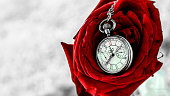 Time is Beauty and Death