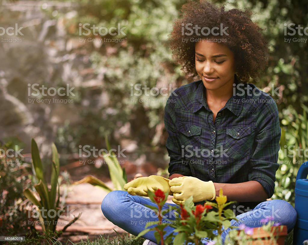 Time to put on those gardening gloves stock photo