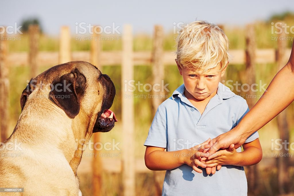 Timid boy stock photo