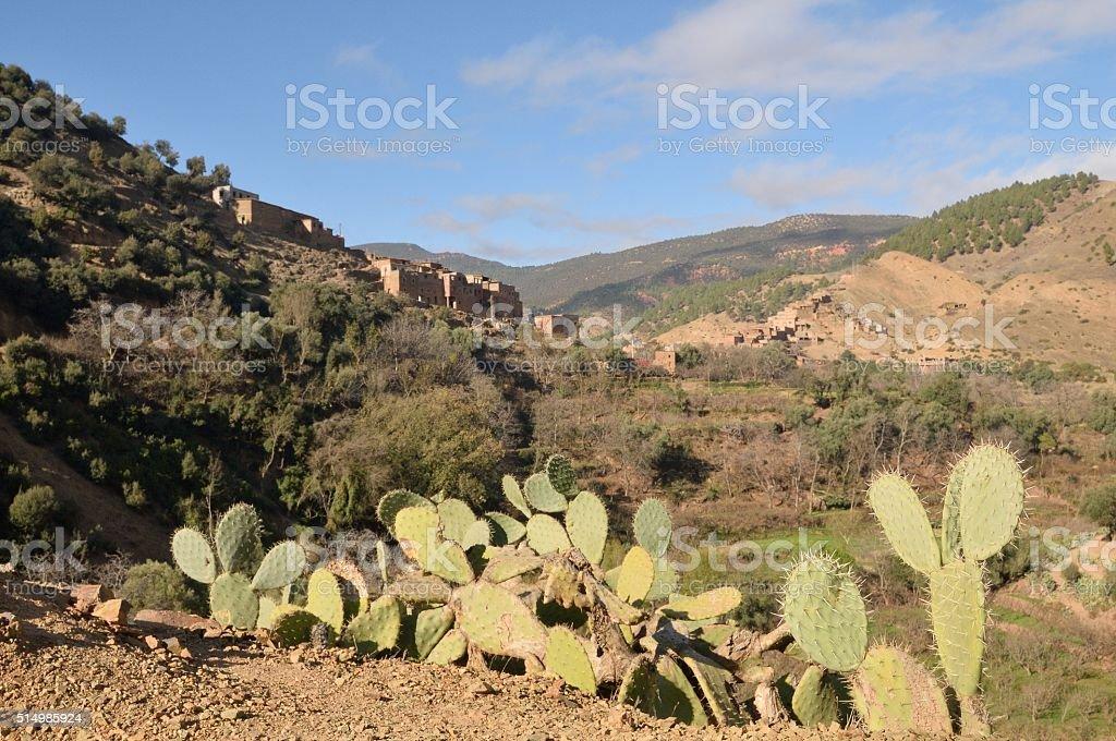 Timsekrine Village abd Prickly Pear Cactui stock photo