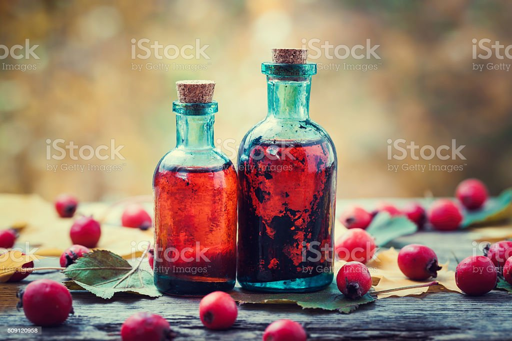 Tincture bottles of hawthorn berries and red thorn apples stock photo