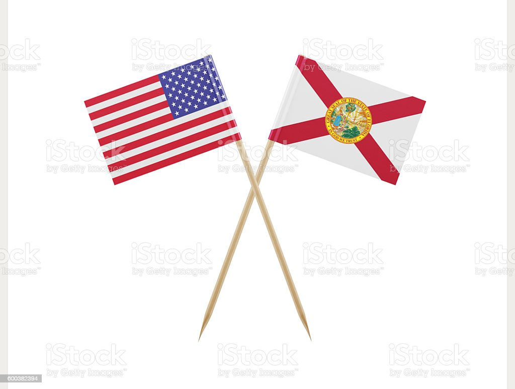 Tiny American and Florida Flag on a Toothpick stock photo