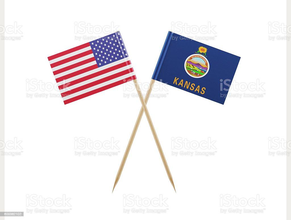 Tiny American and Kansas Flag on a Toothpick stock photo