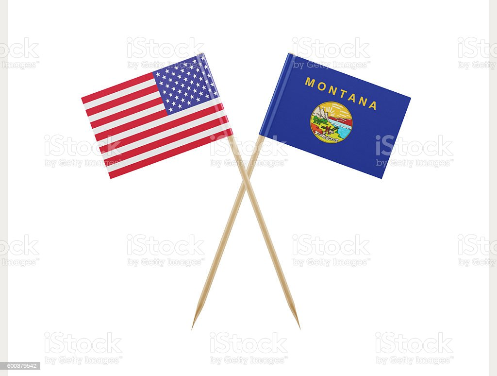 Tiny American and Montana Flag on a Toothpick stock photo