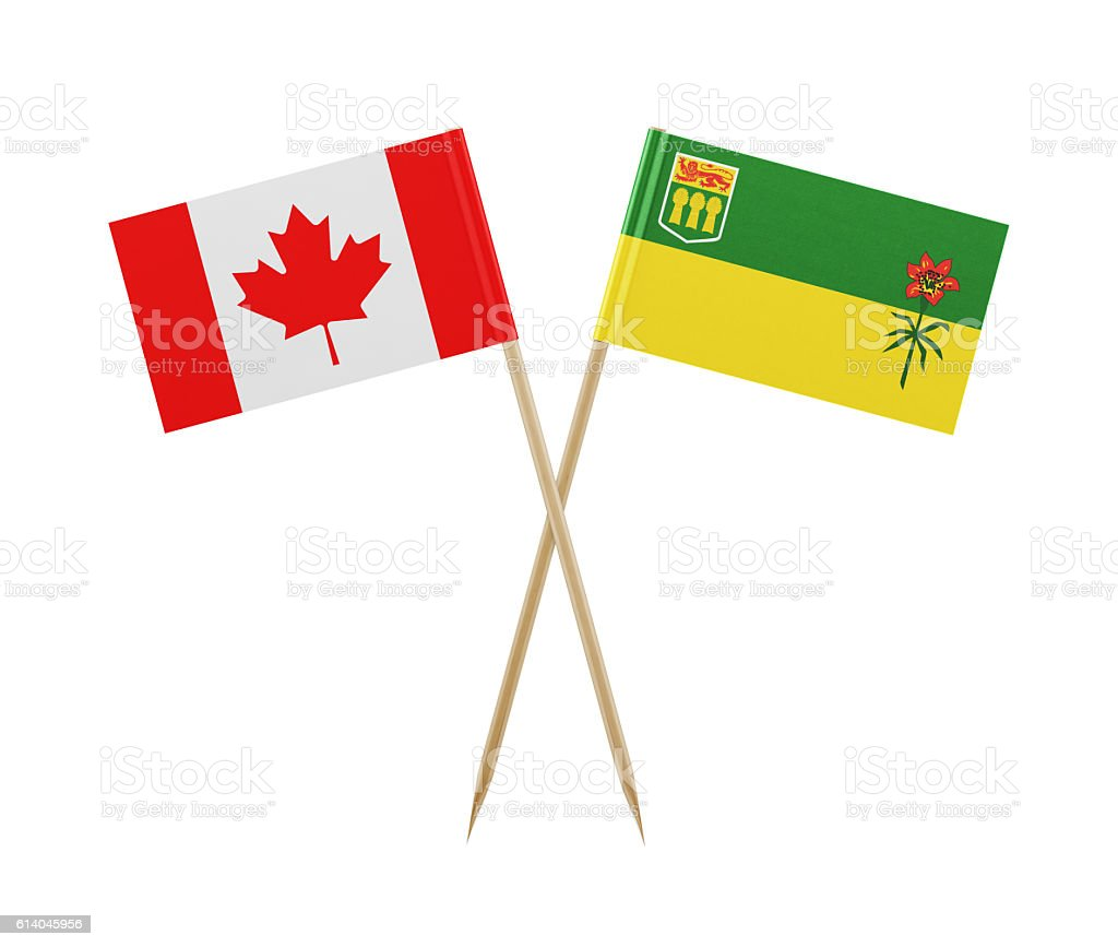 Tiny Canadian and Saskatchewan Flag on a Toothpick stock photo