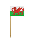 Tiny Flag of Wales on a Toothpick