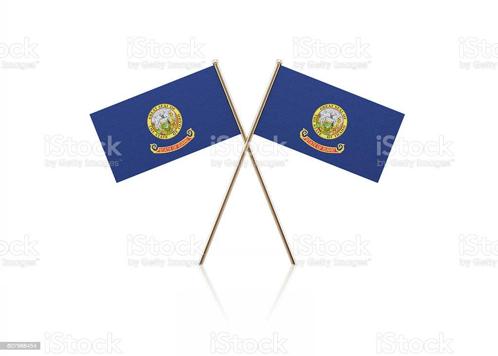 Tiny Idaho Flag Pair on Gold Sticks stock photo