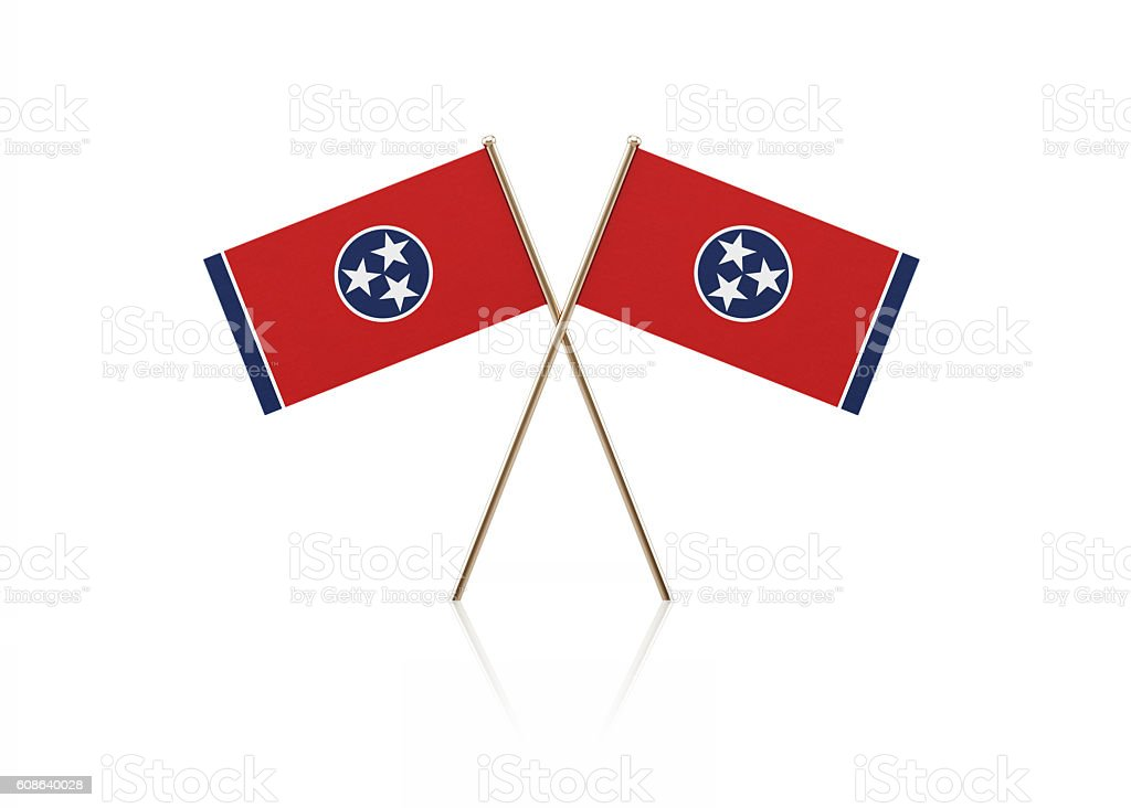 Tiny Tennessee Flag Pair on Gold Sticks stock photo