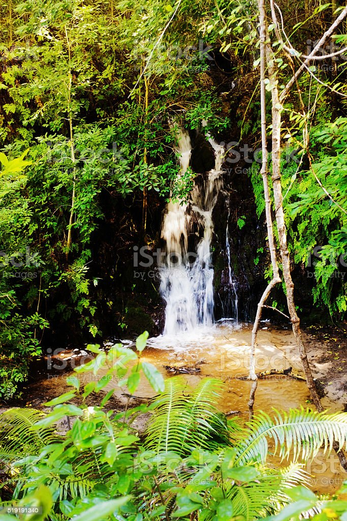 Tiny waterfall hidden in the woods stock photo