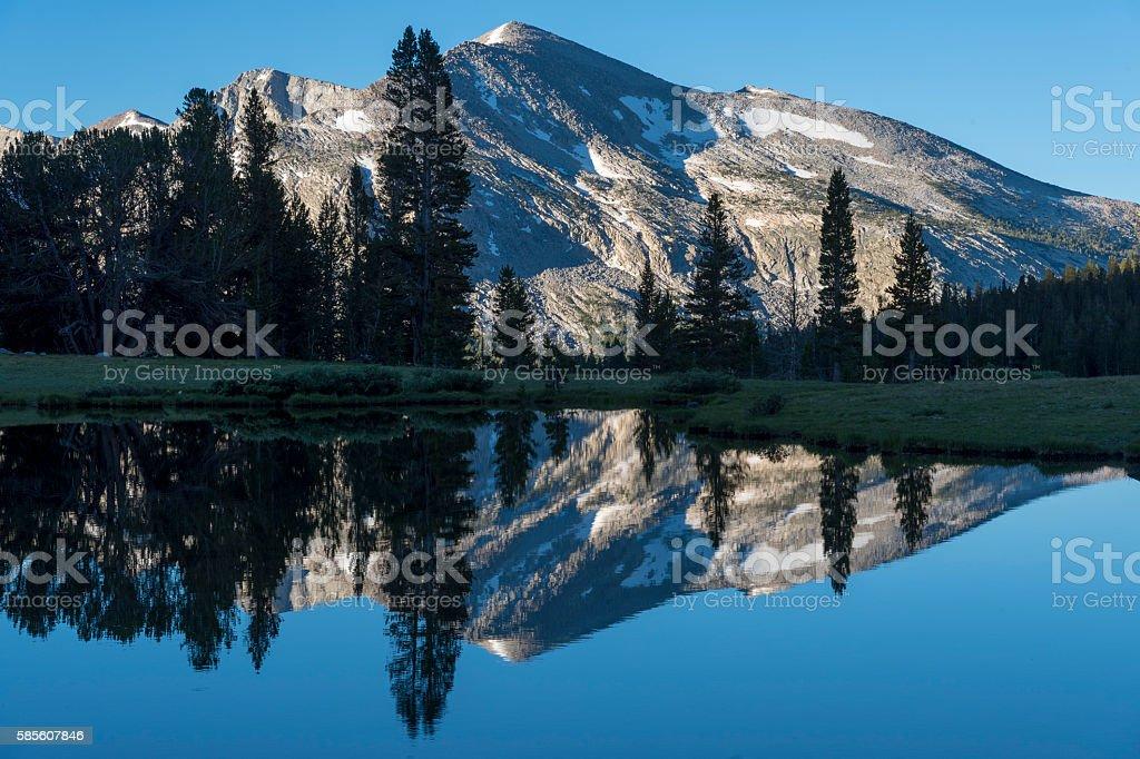Tioga Pass Pond and Mount Dana stock photo