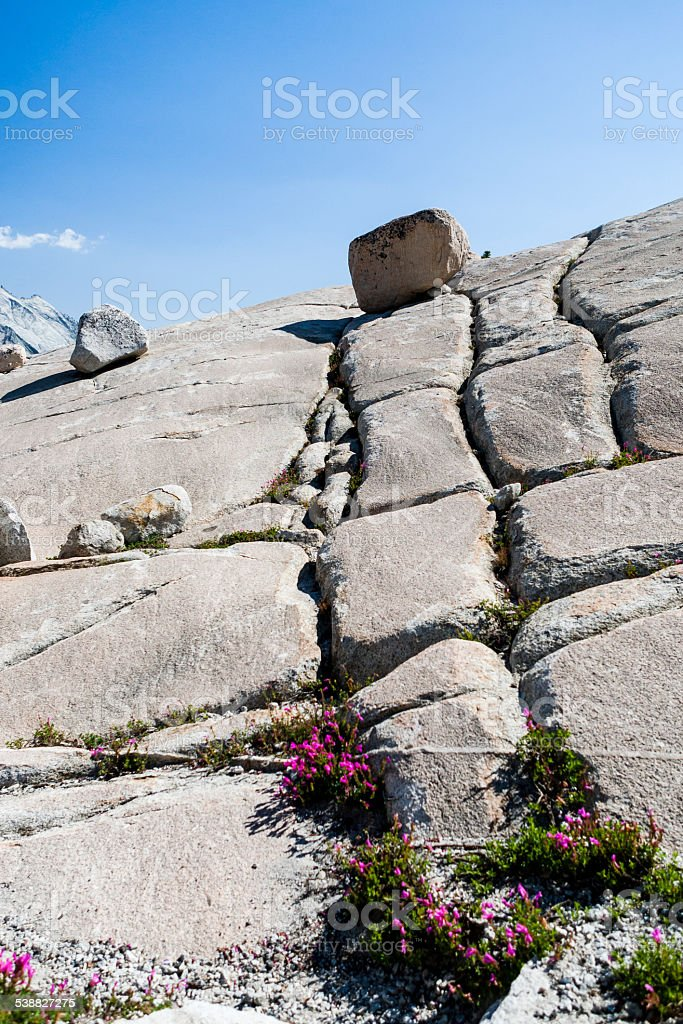 Tioga Road, Yosemite National Park, Sierra Nevada, USA stock photo