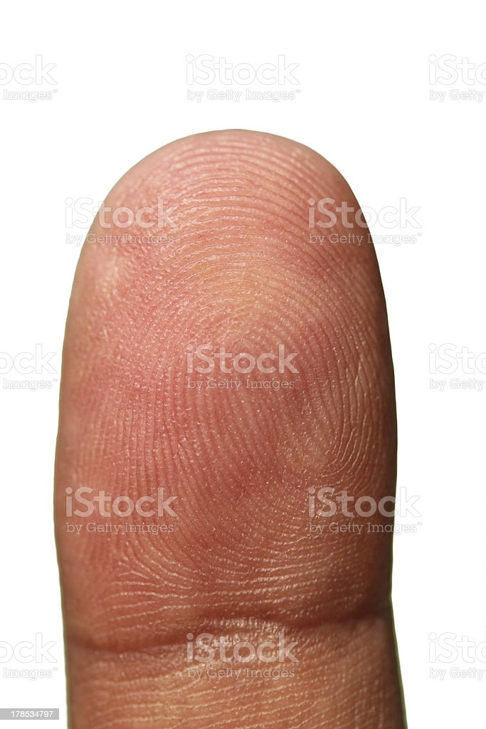 Tip of human hand showing unique finger print lines royalty-free stock photo