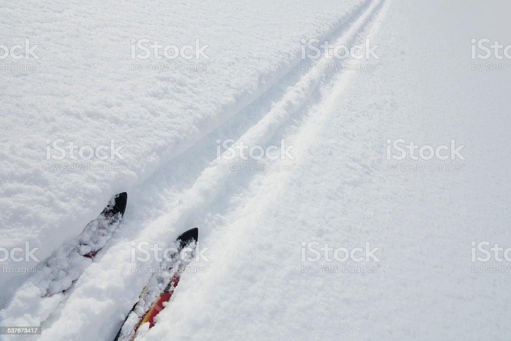 tip of the skis in the ski trail stock photo