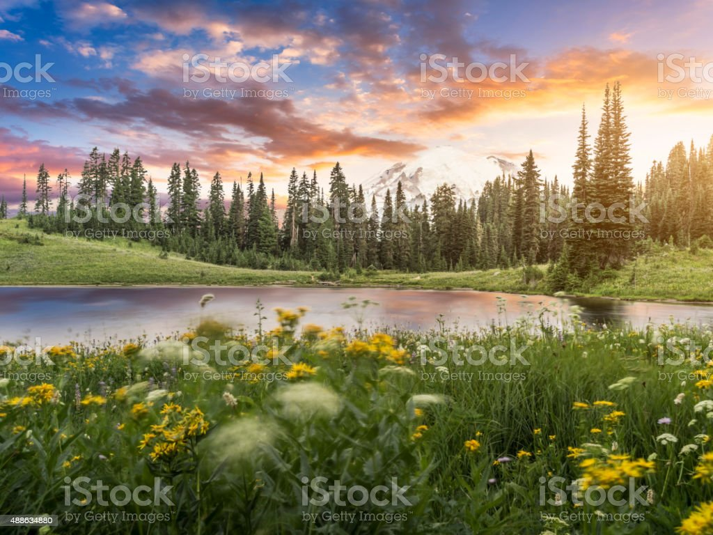 Tipsoo Lake of MT.Rainier stock photo