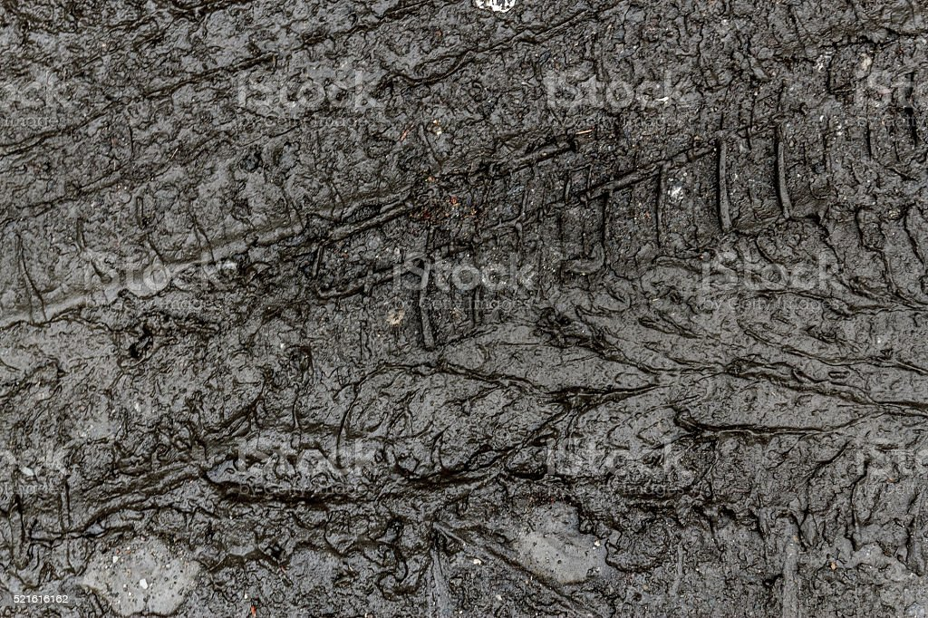 Tire print in mud stock photo