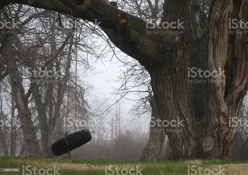 Tire swing Horizontal stock photo