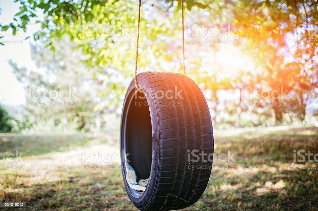 Tire swing stock photo