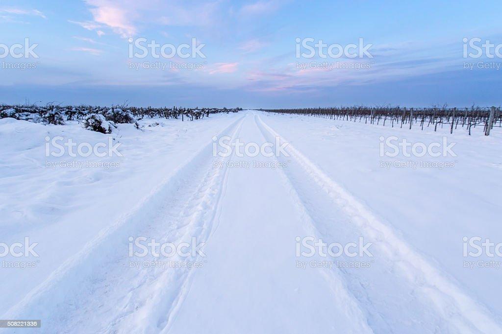 Tire track in the snow stock photo