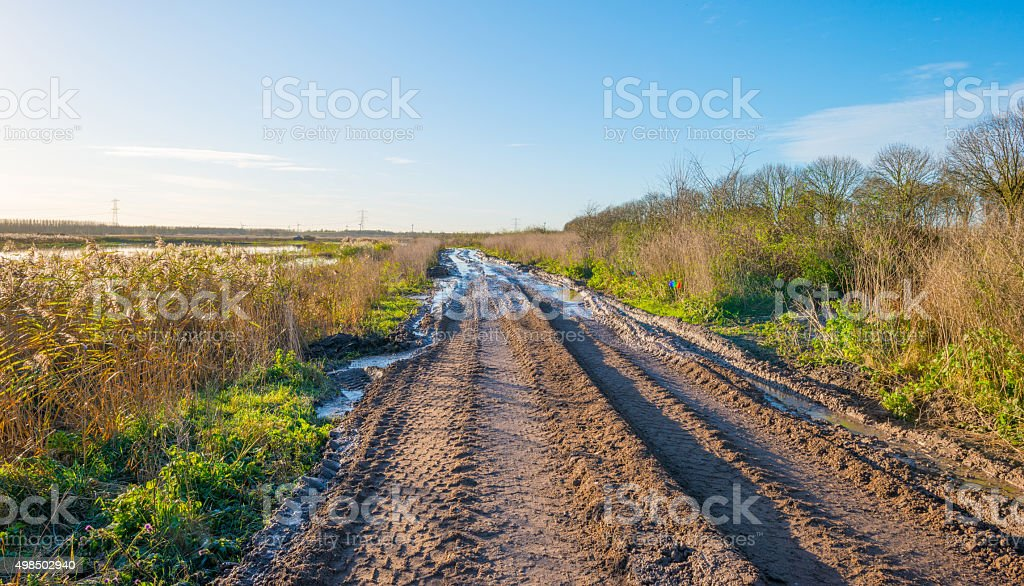 Tire tracks along a lake in autumn stock photo