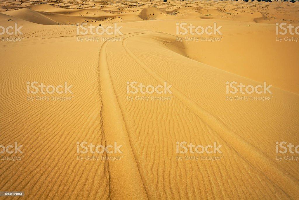 Tire Tracks in the Sand of Sahara Desert royalty-free stock photo