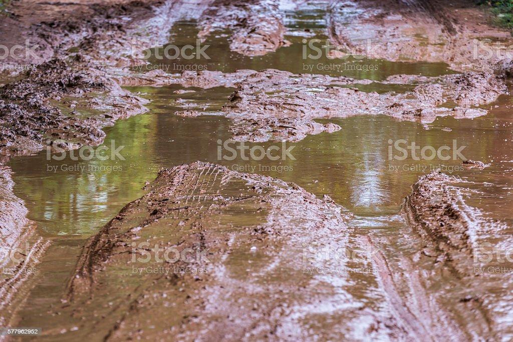 Tire tracks on  muddy. stock photo
