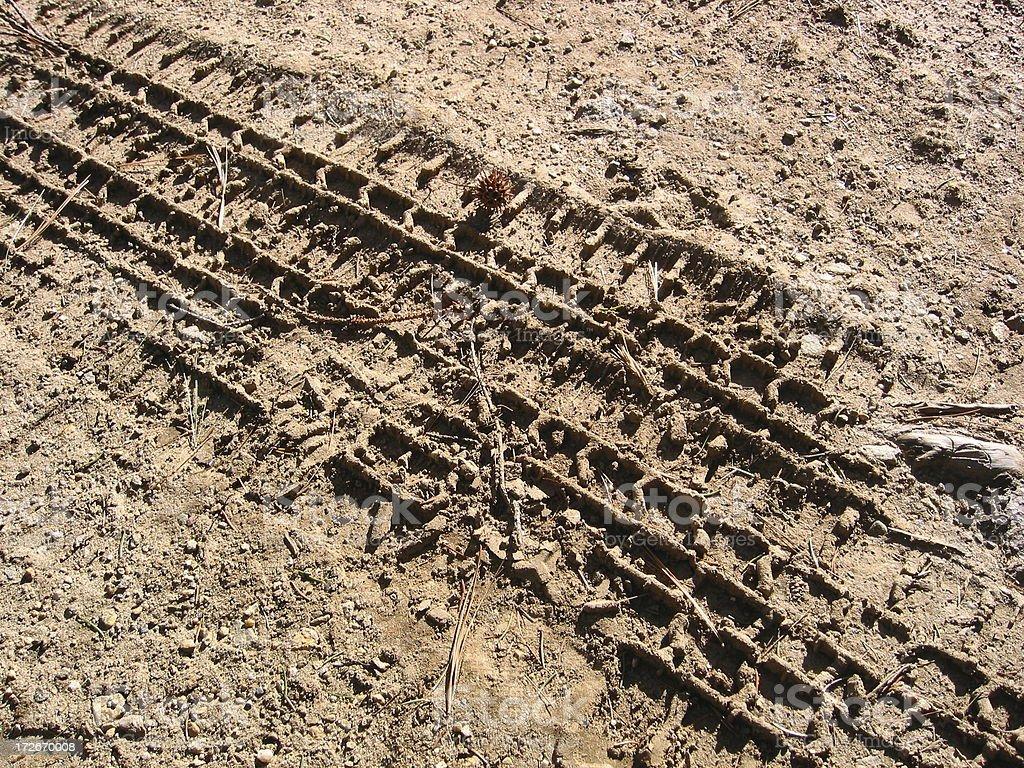 Tire Tracks royalty-free stock photo