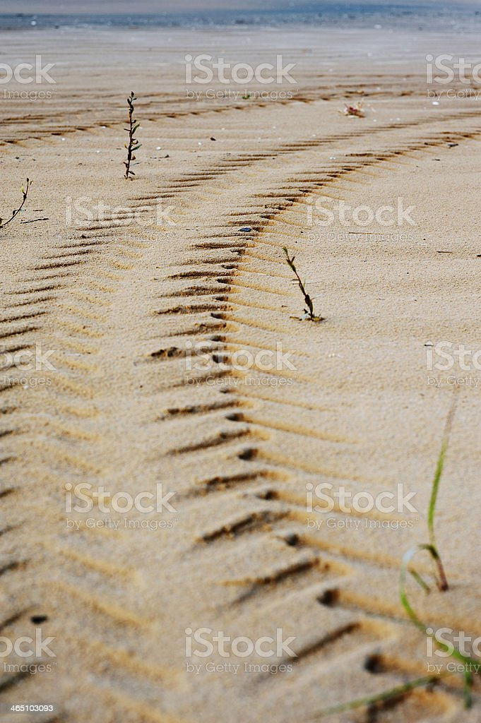 Tire Tracks Prints in Sand on a Beach stock photo