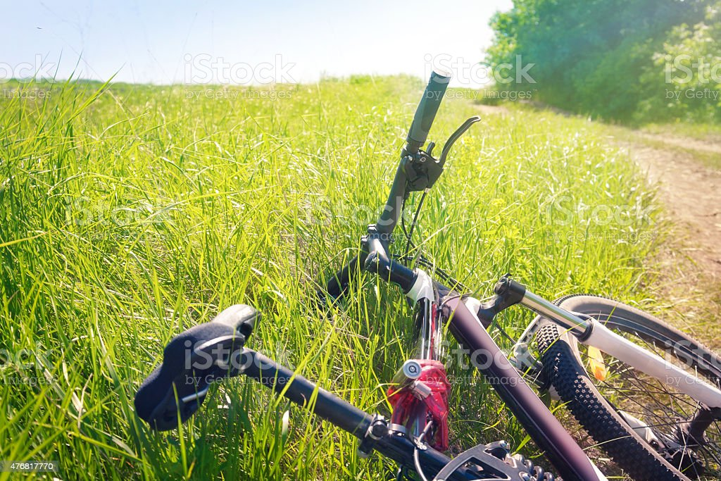 Tired bicycle lying in the grass stock photo