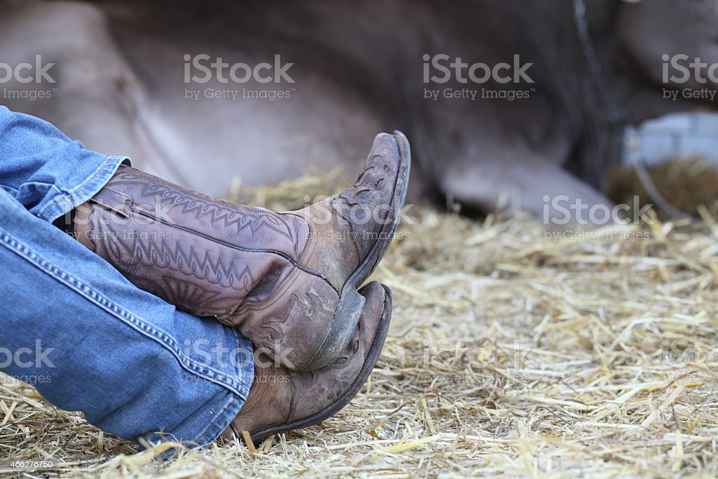 tired cowboy in the barn of the farm stock photo