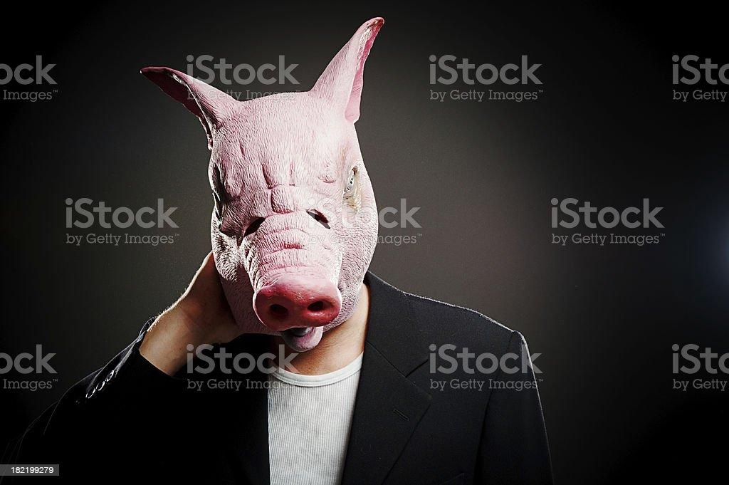 Tired swine royalty-free stock photo