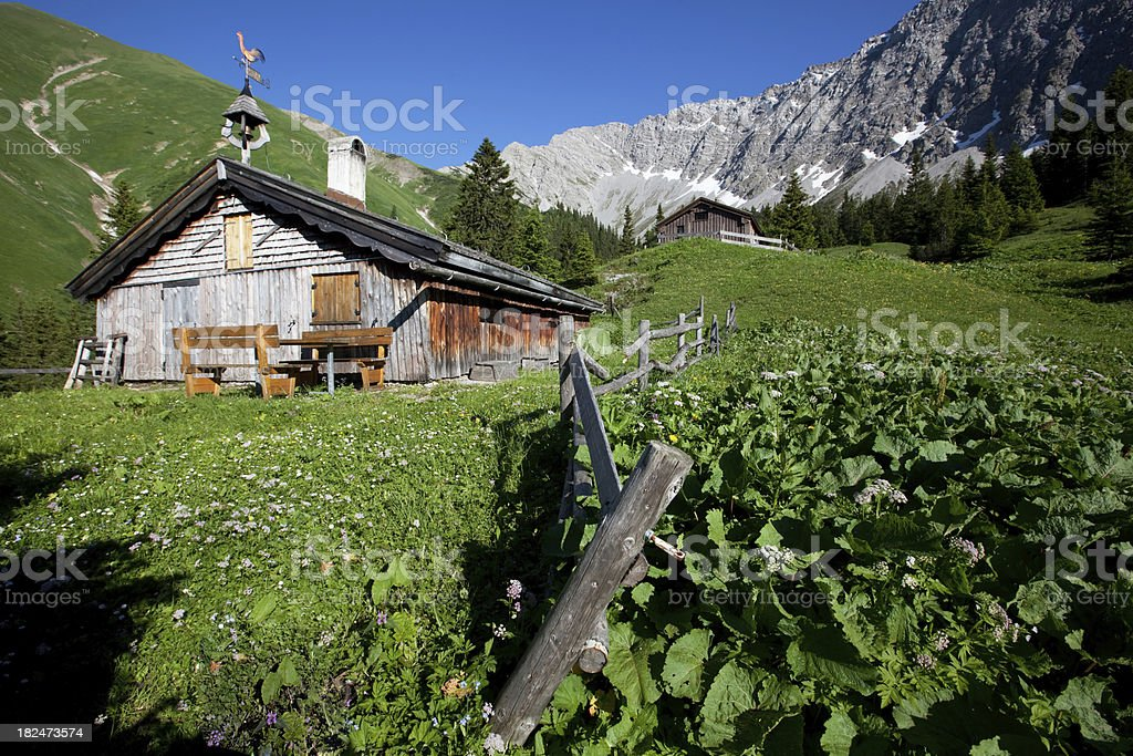 tirolean alp meadows royalty-free stock photo