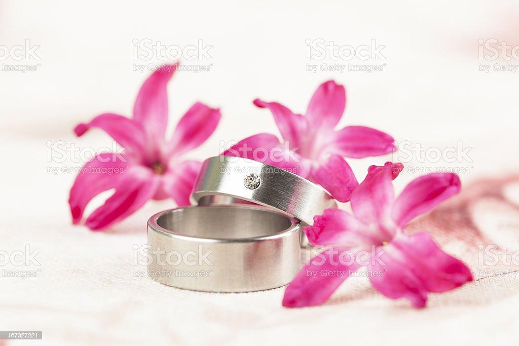 Titanium wedding rings royalty-free stock photo