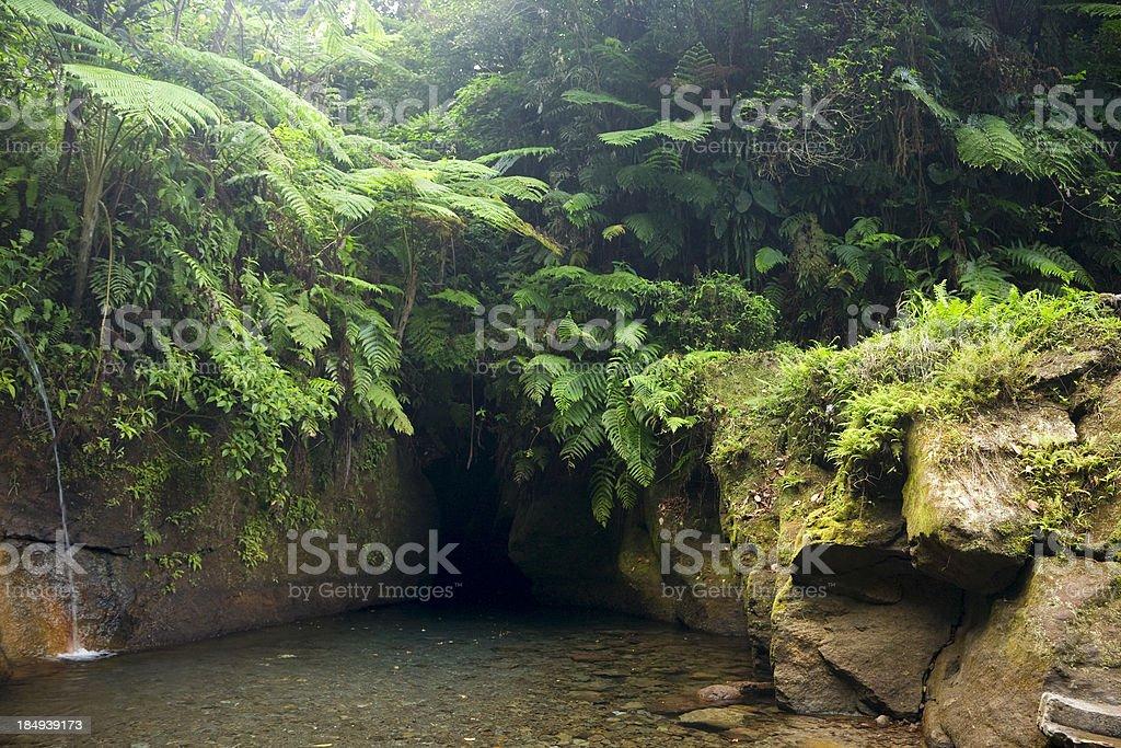 Titou gorge on Dominica royalty-free stock photo