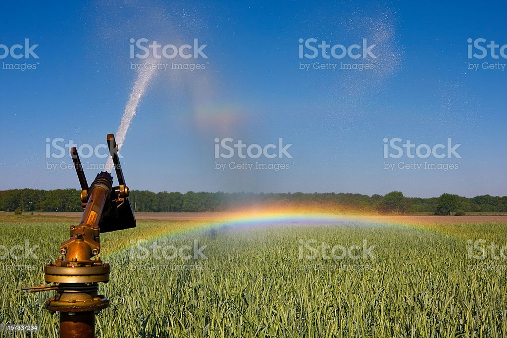 To chase a Rainbow royalty-free stock photo