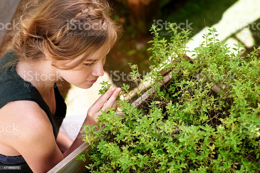 To plant a garden is to believe in tomorrow stock photo