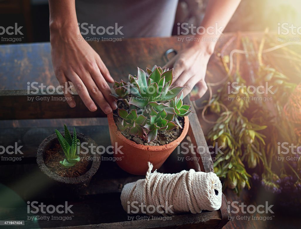 To plant is to believe in tomorrow stock photo