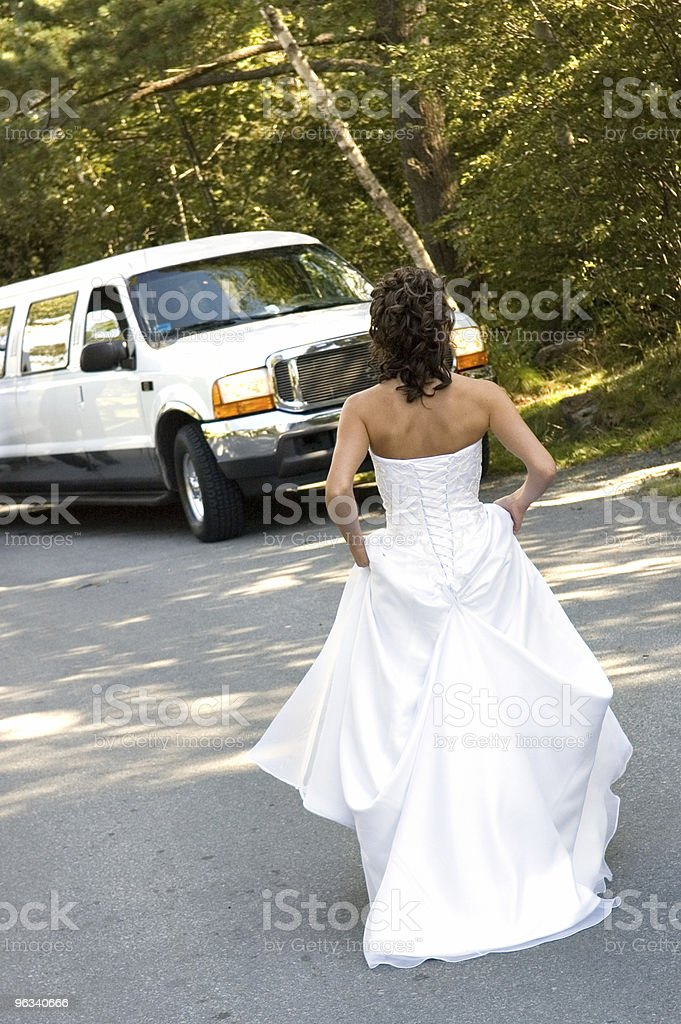 To the Limo! stock photo