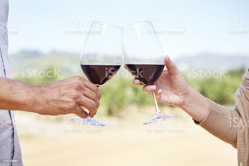 To us! royalty-free stock photo