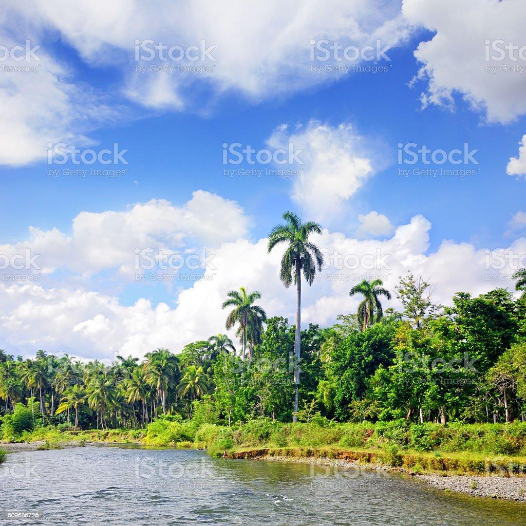 Toa river, Cuba stock photo