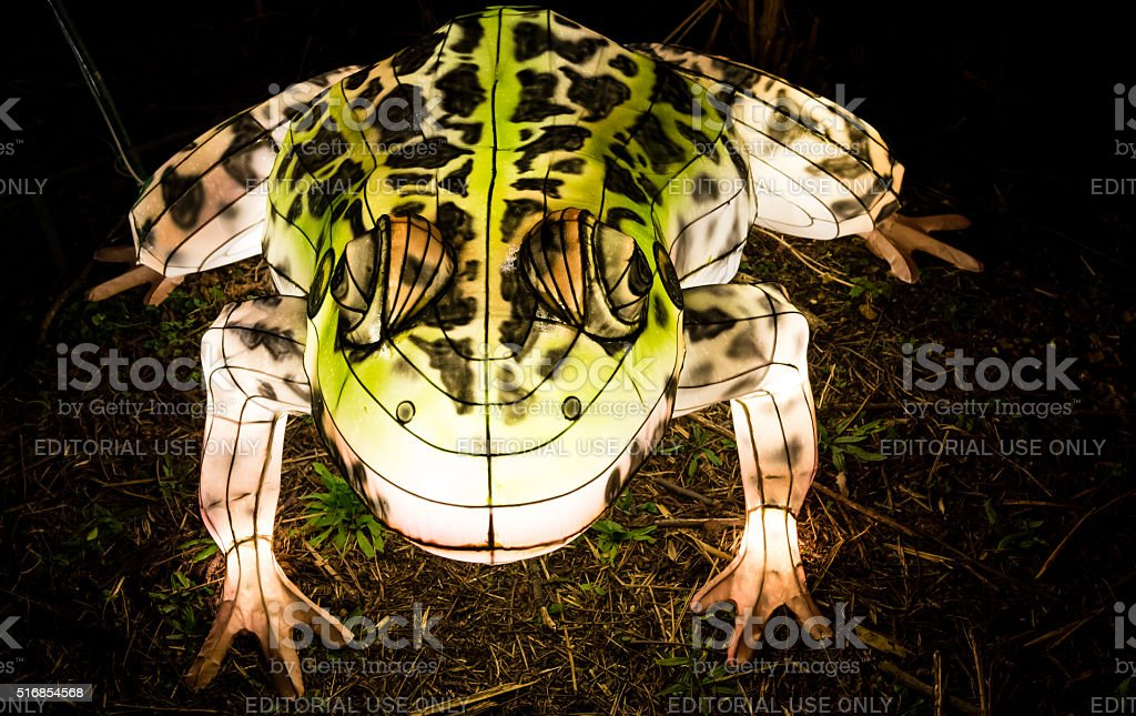 Toad lantern glowing in the dark stock photo