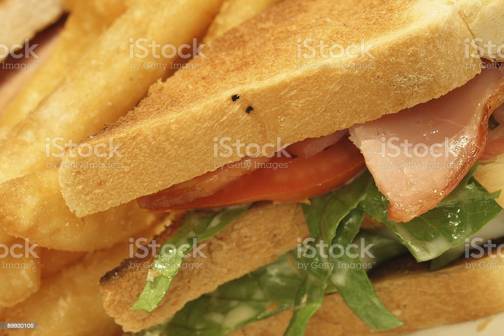 Toasted BLT with fries royalty-free stock photo