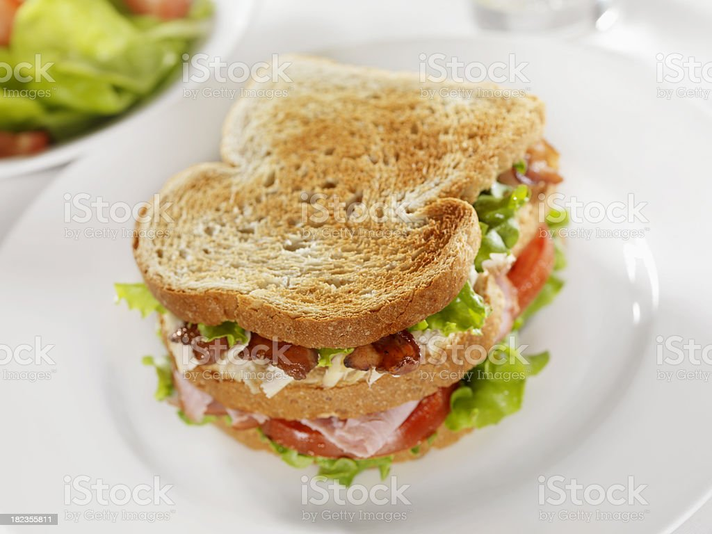 Toasted Club Sandwich with Garden Salad royalty-free stock photo