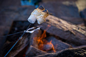 Toasted marshmallows over the fire