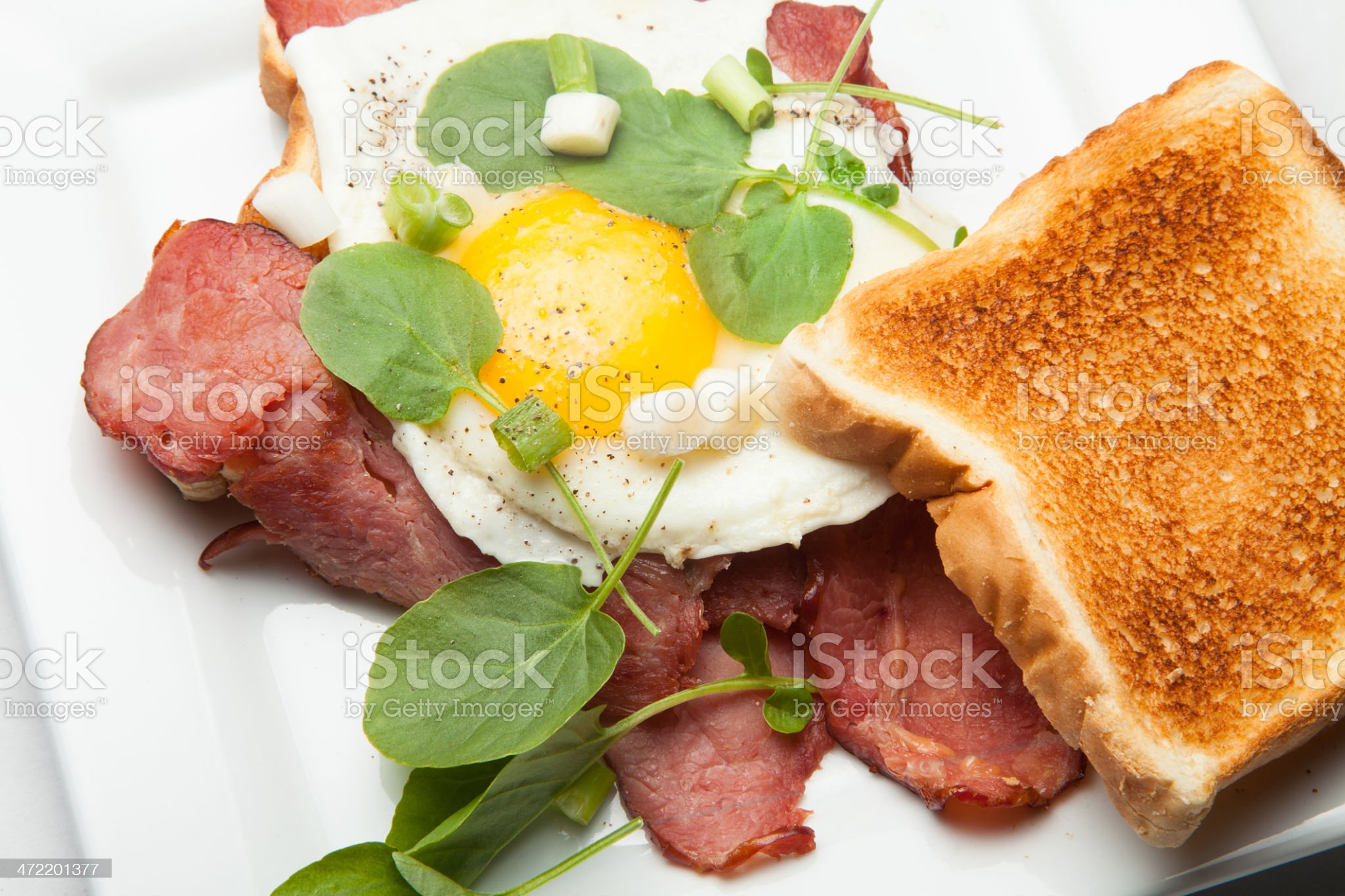 Toasted Roast beef and egg sandwich royalty-free stock photo