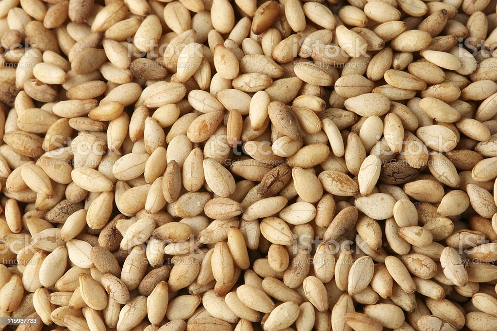 Toasted Sesame Seeds (MACRO) royalty-free stock photo