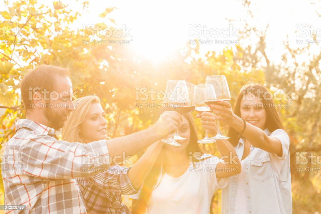 Toasting in a vineyard stock photo