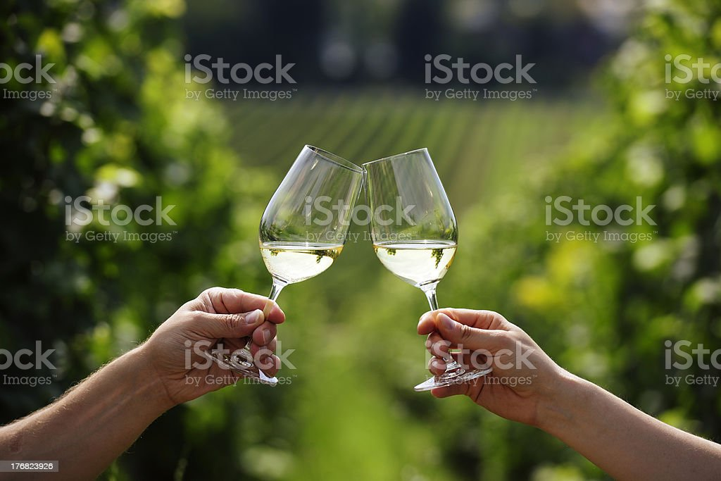 Toasting with two glasses of white wine in vineyard stock photo