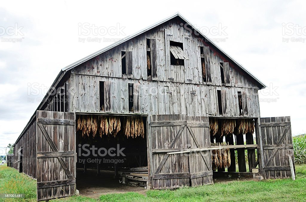 Tobacco Barn royalty-free stock photo